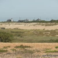 Surveyor Dungeness