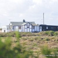 cottage in dungeness; kent; building survey