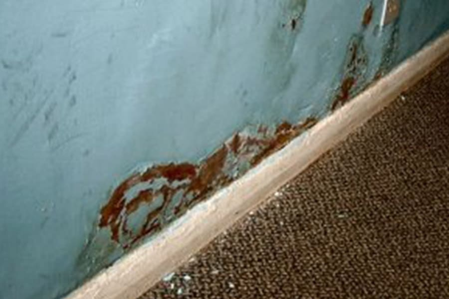 internal damp, rising and penetrating damp